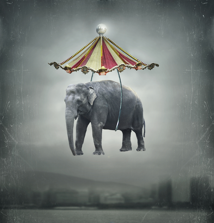 Evil Circus A dark carnival filled madness, magic, and grinning clowns.