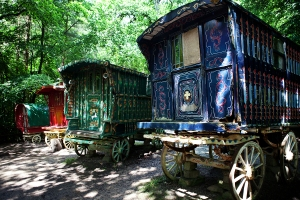 Wandering wizards and their fey-folk park fanciful wagons in the forest near Lita's castle