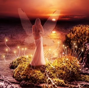 A Highland Fairy