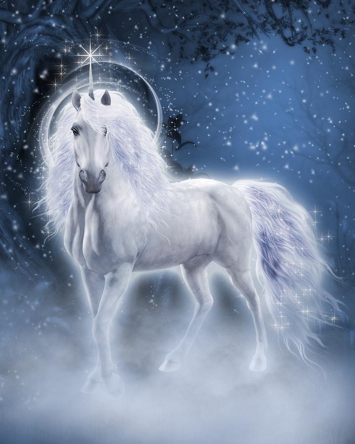 unicorn | Lita Burke