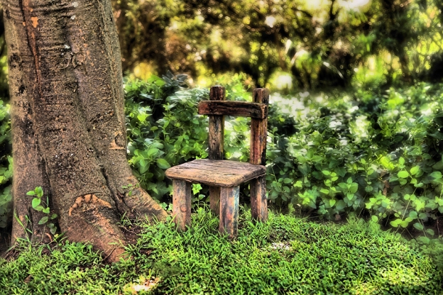 Dryad's Chair in the Woods