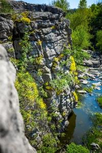 A Desperate Fight at the Edge of a Precipice
