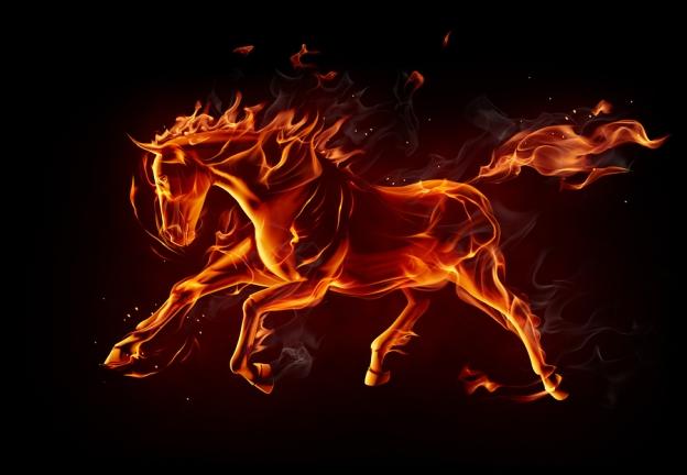 Glitter Pony Magic