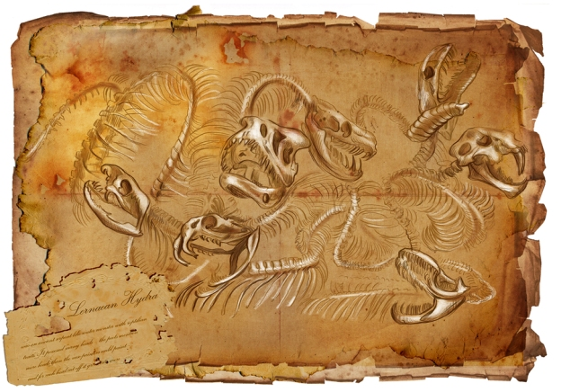 Bestiarum Vocabulum Hydra Bones