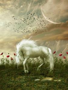 A Glitter Pony on Wuddlekins Island