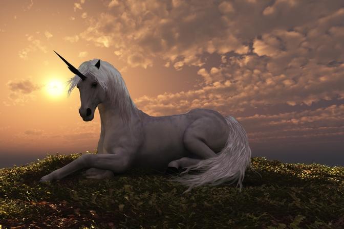 Interview: Wizard Kadmeion Talks About Glitter Ponies