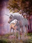 Probability Visited the Unicorns on Wuddlekins Island