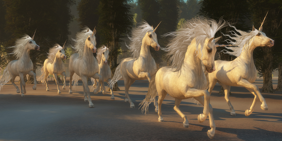The Wuddlekins Island Unicorns
